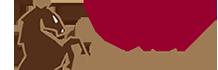 Vici International Logo